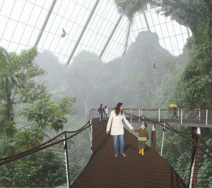 Rendering of New Canopy Entrance in Rainforest Pyramid 