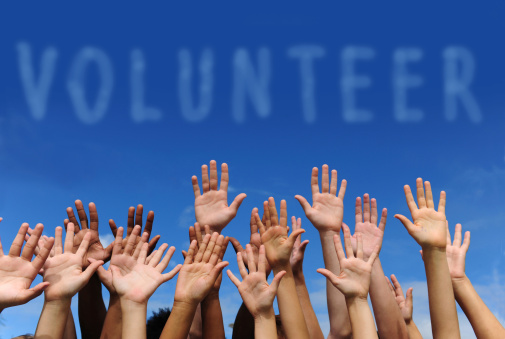 Group Volunteer Opportunities