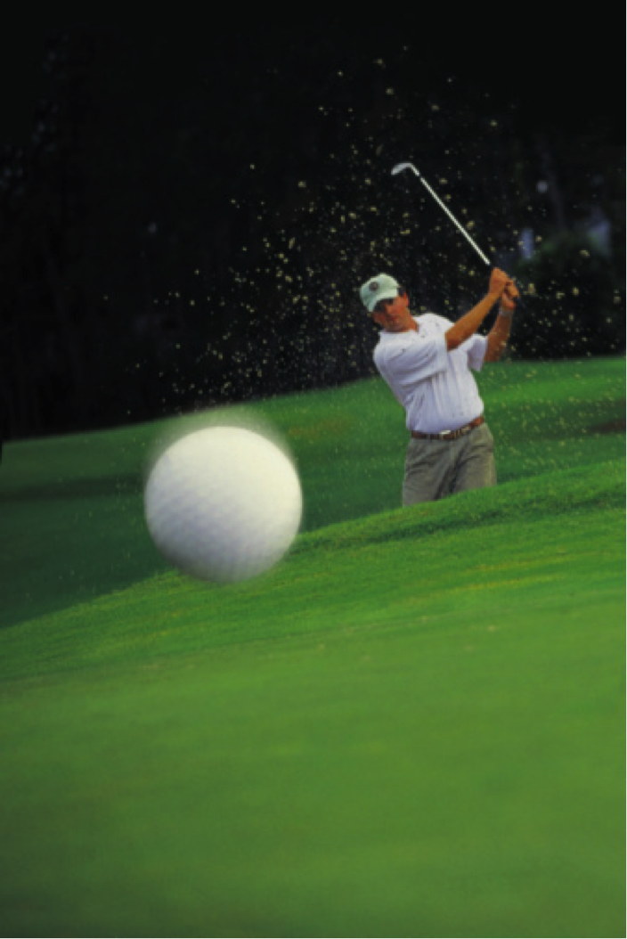 Upcoming Events at Moody Gardens Golf Course