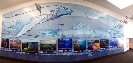 One World One Ocean Foundation Display outside of MG 3D Theater