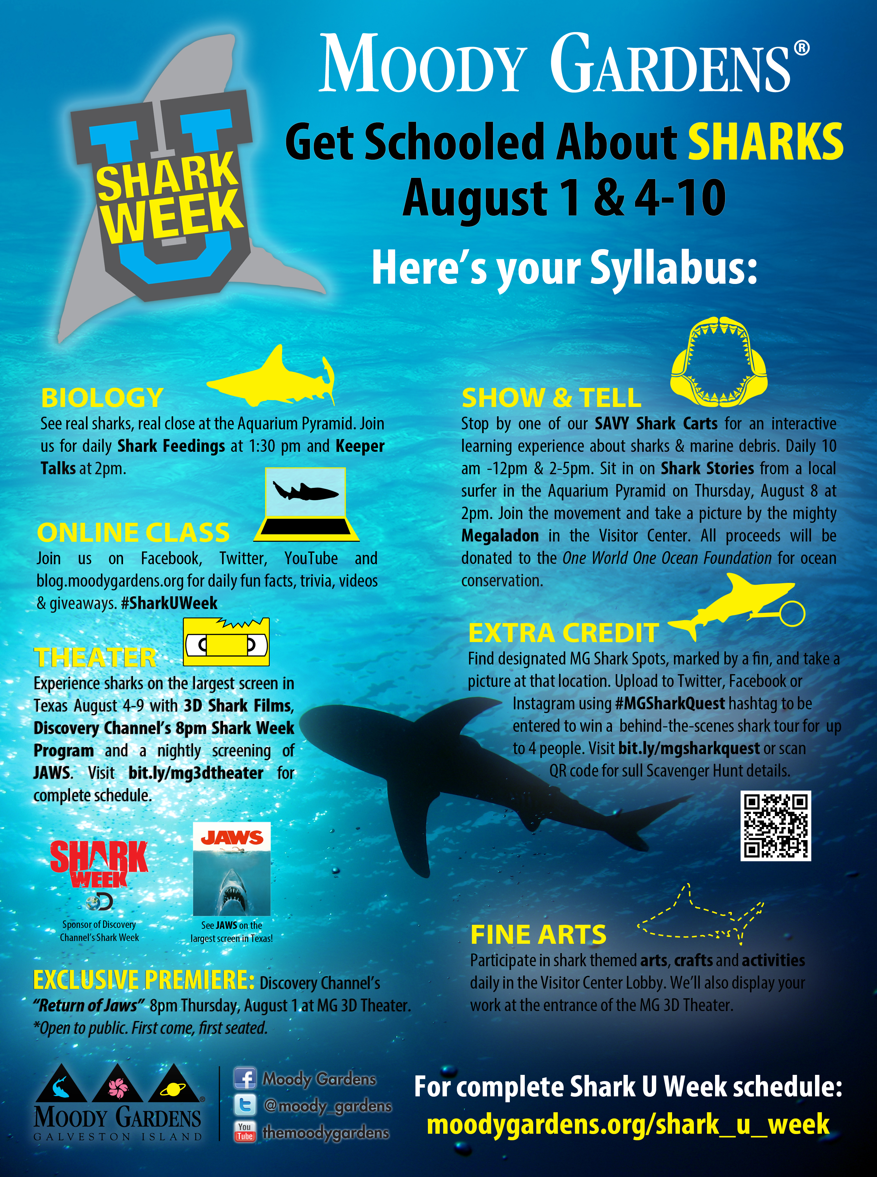 Shark U Week: Here's Your Syllabus