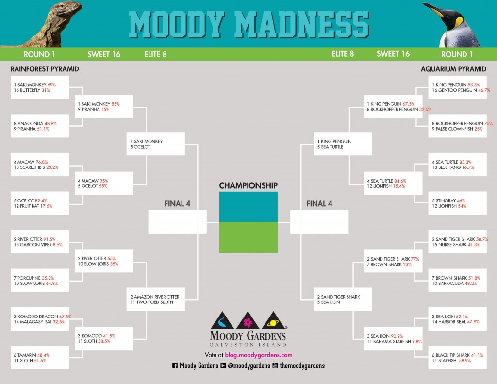 MoodyMadnessBracket_Elite8_Web