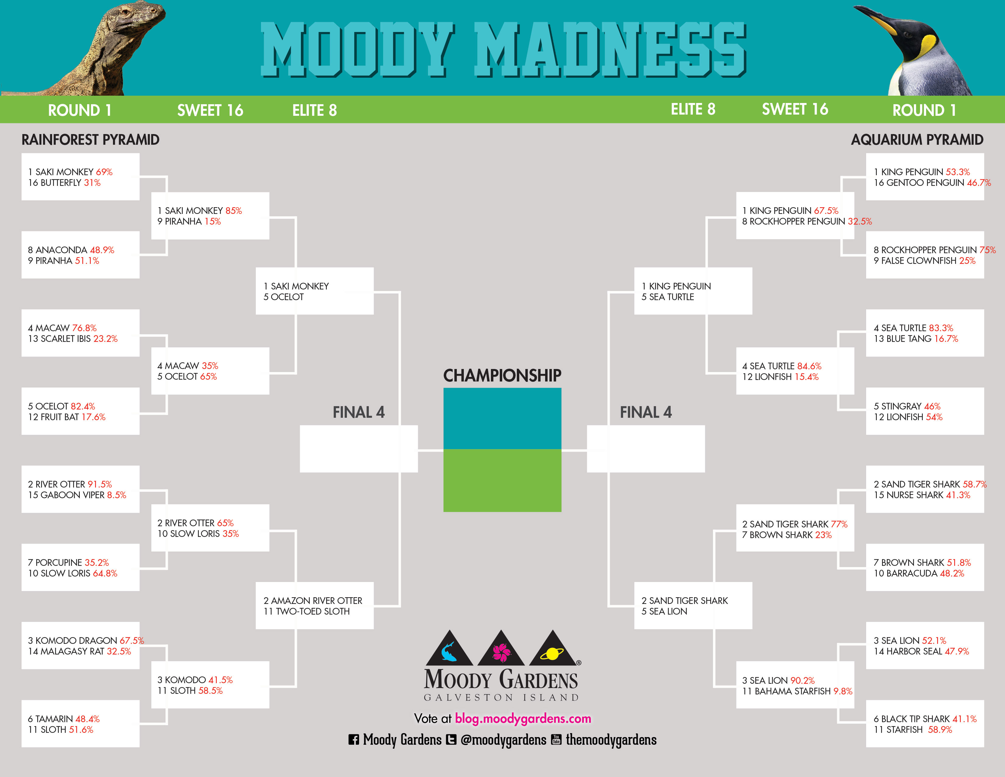 Moody Madness: Elite 8