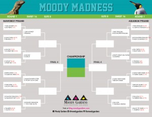 MoodyMadnessBracket_Sweet16_Web
