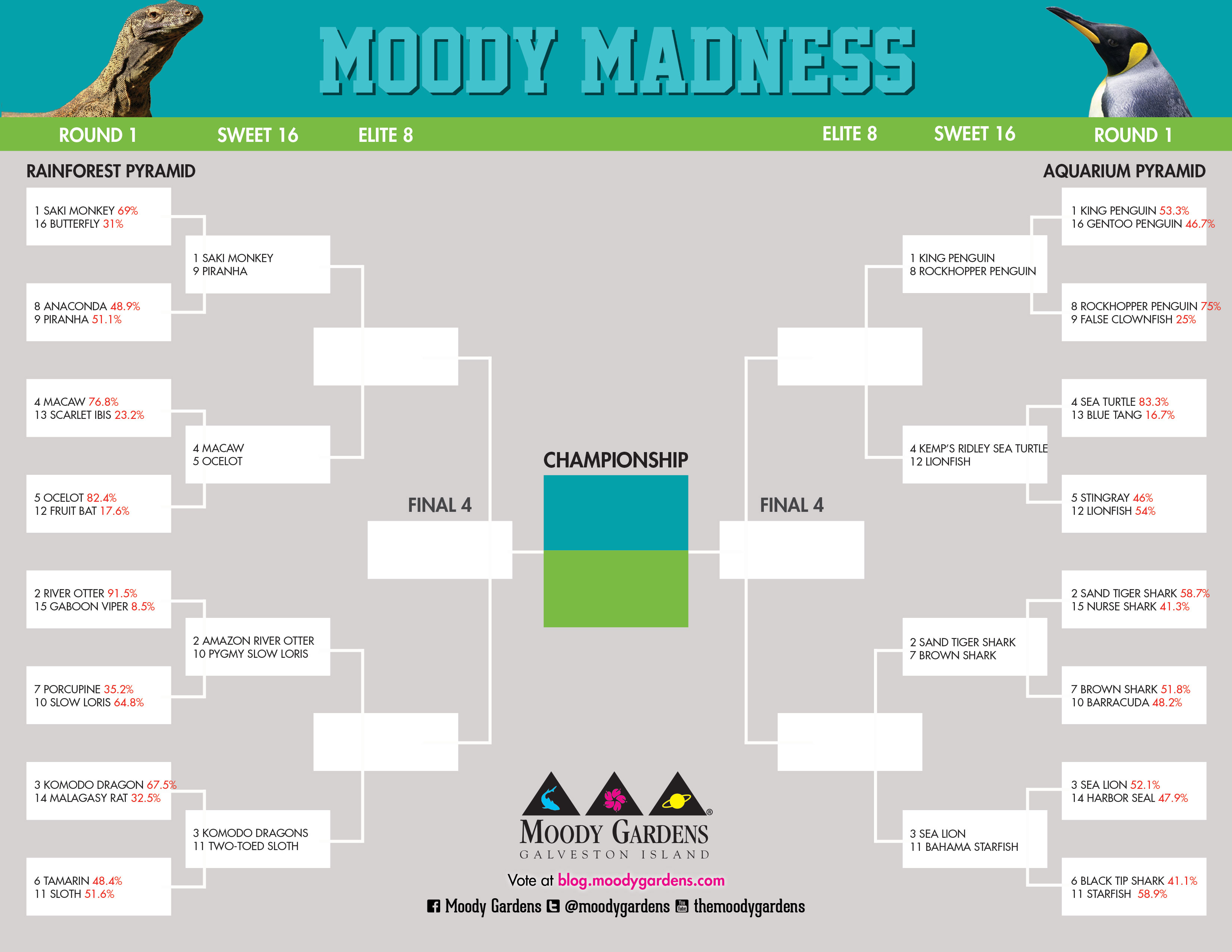 Moody Madness: Sweet 16