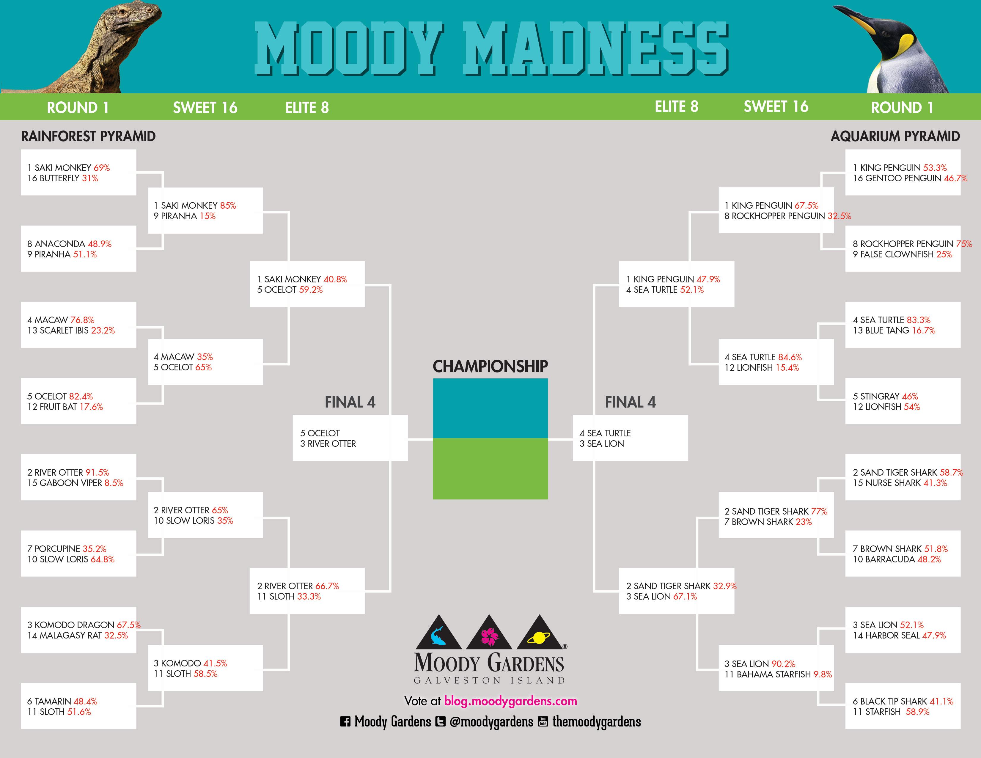 Moody Madness: Final 4