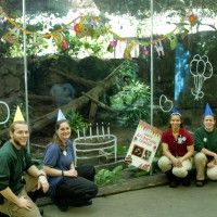The Rainforest Pyramid staff threw Cooper a birthday bash!