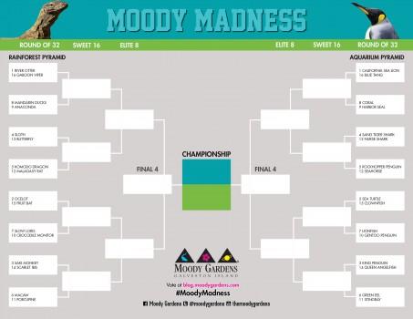 MoodyMadnessBracket_web